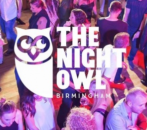 The Night Owl logo